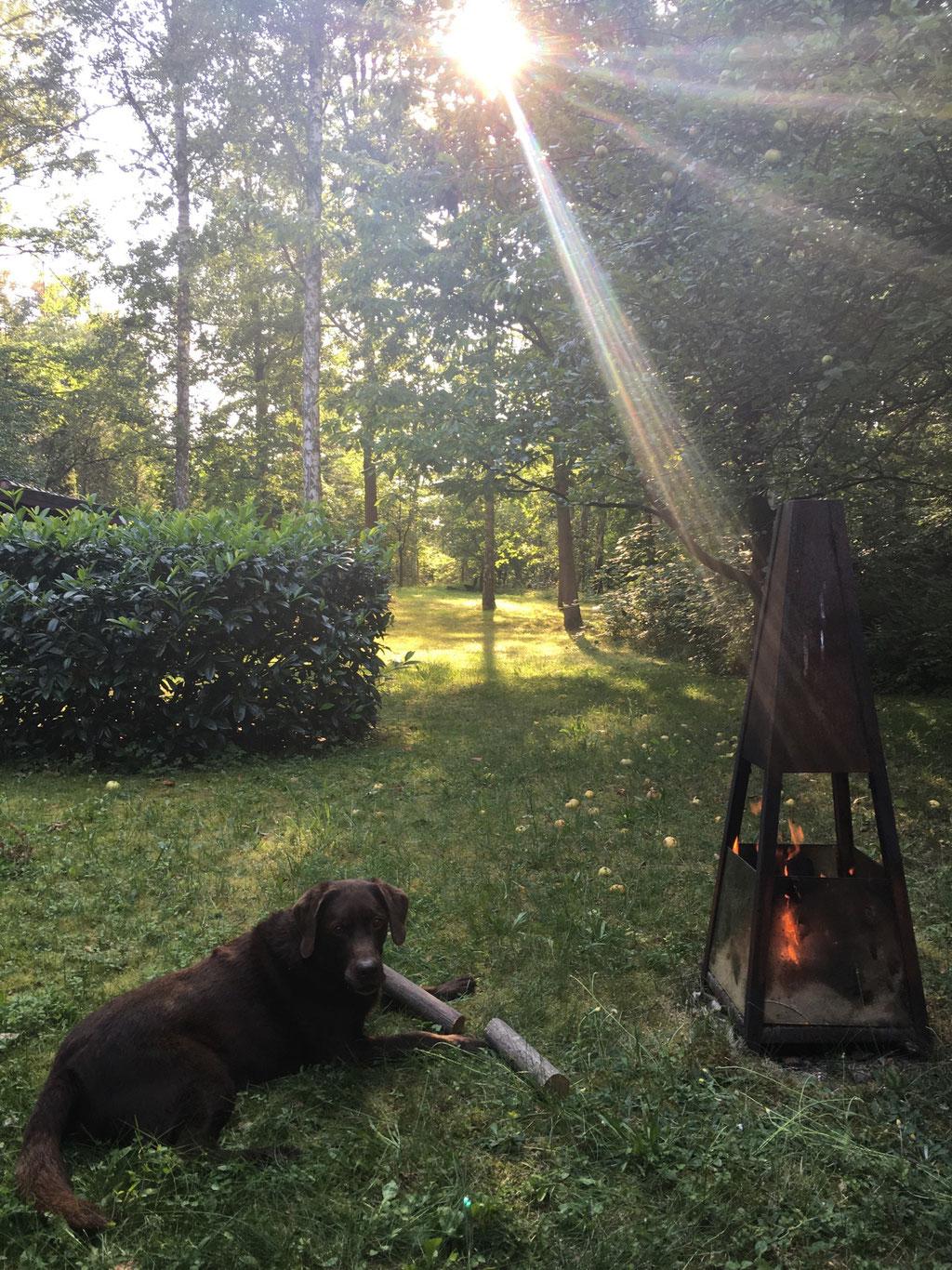 Ferienhaus am Wasser mit Hund eingezäunt