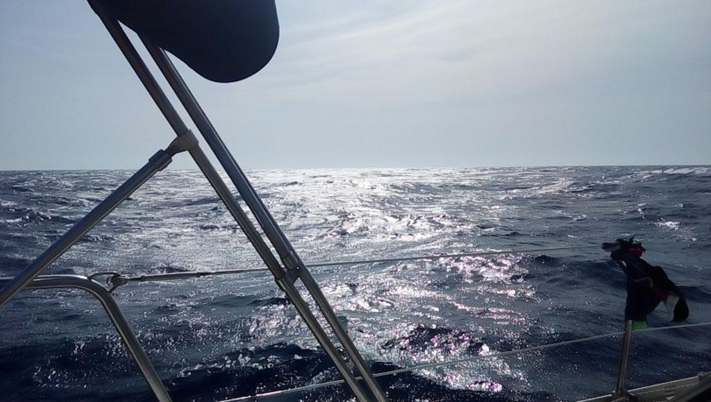Abschied vom weiten Meer...