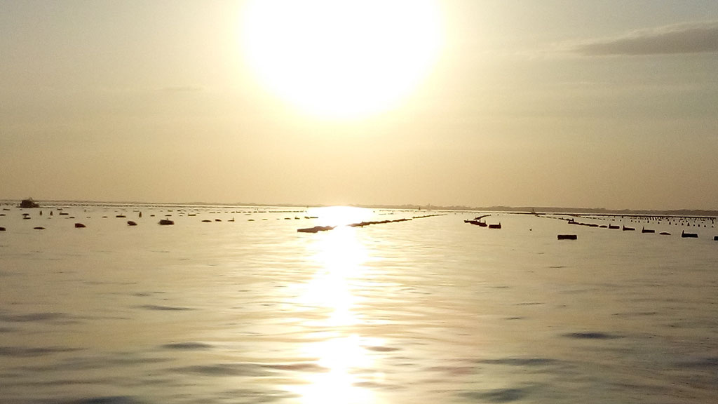 Lagunenlandschaft - Venedig ist nicht weit!