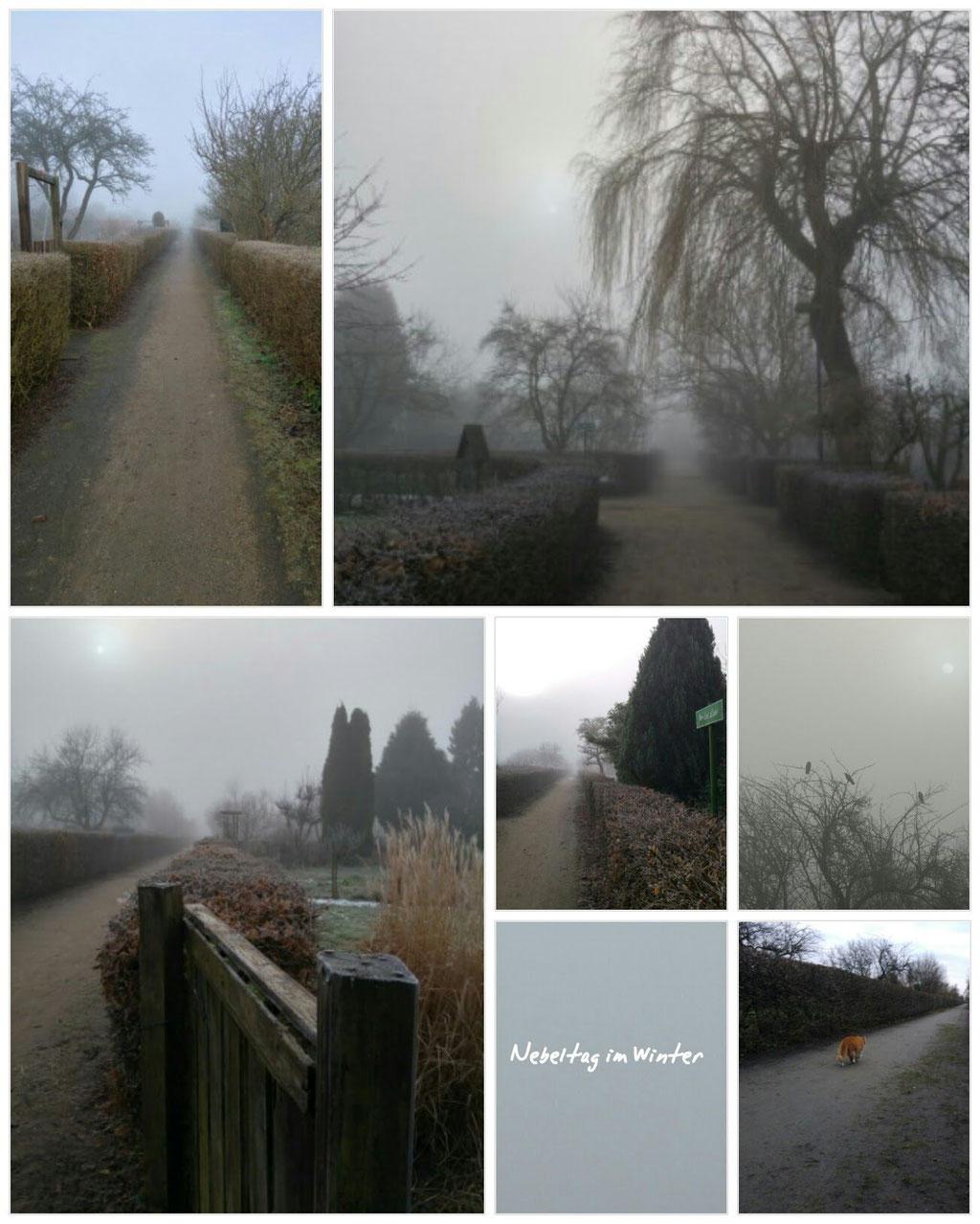 Nebeltag im Winter