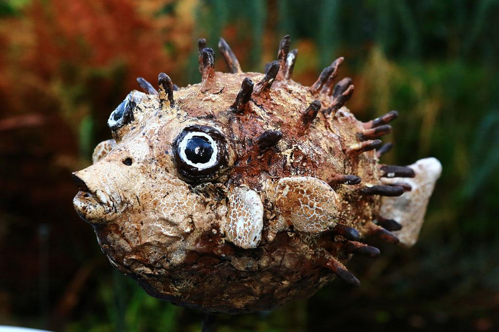 Blowfish - Powertex