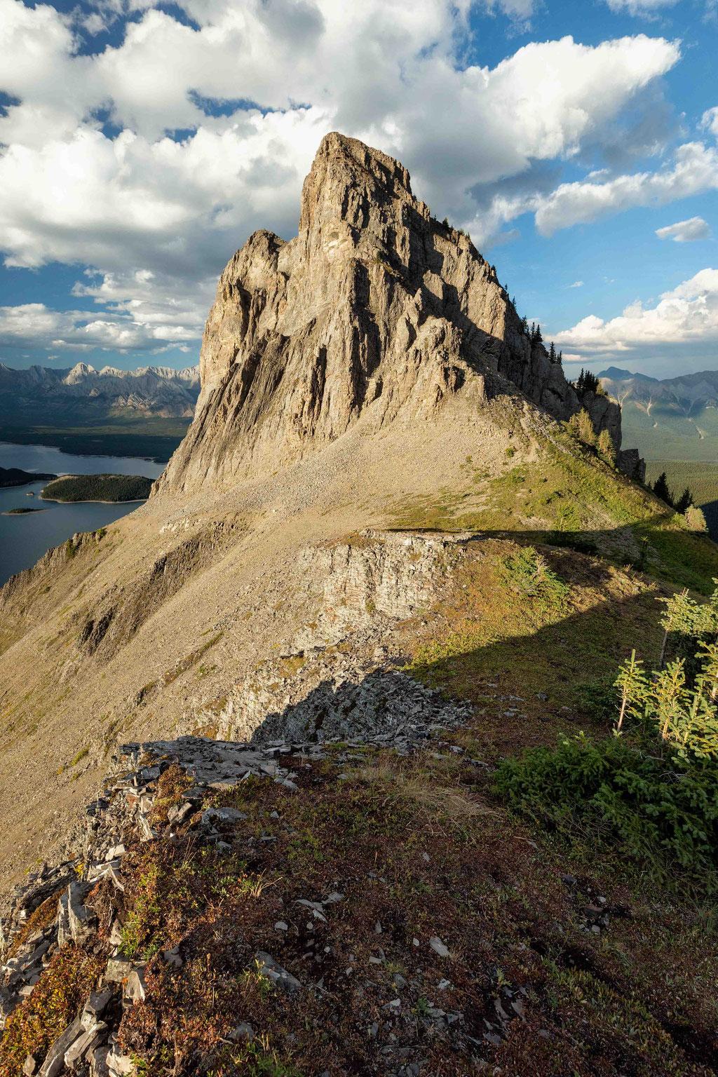The ridge line
