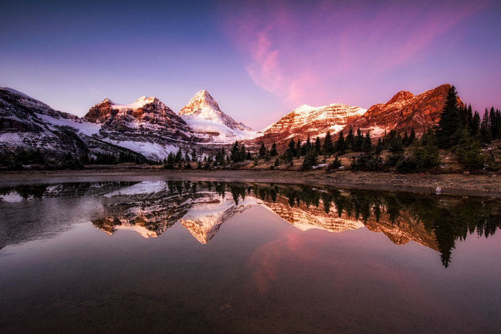 The Meadows, Mount Assiniboine Provincial Park