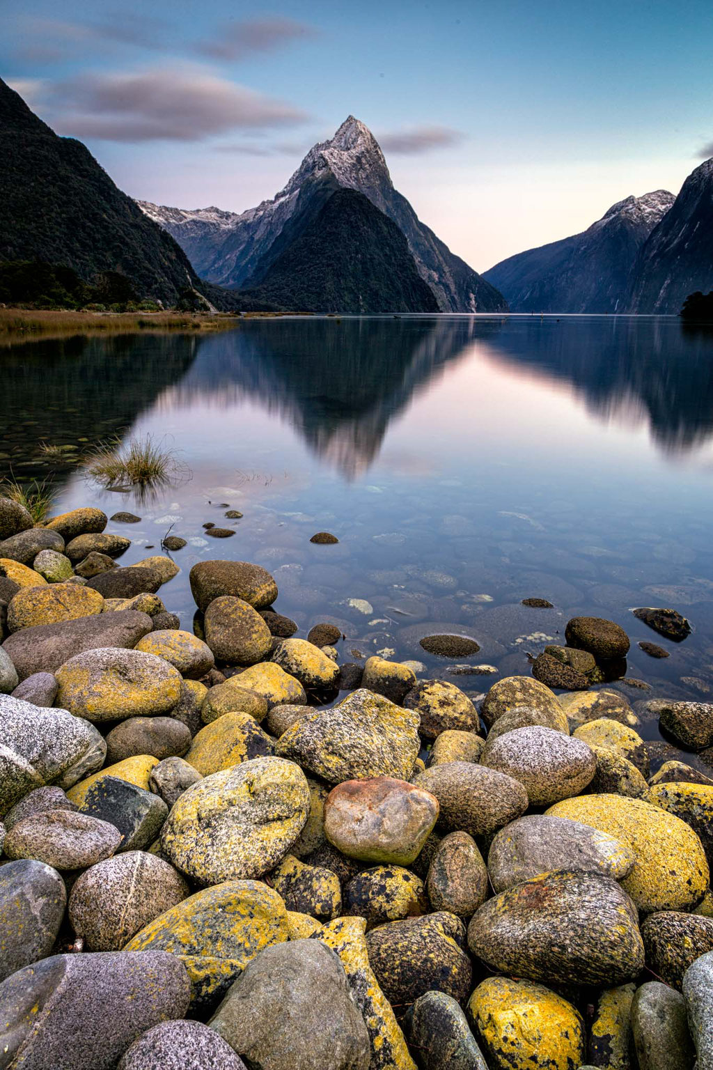 Early morning and calm waters in Milford Sound