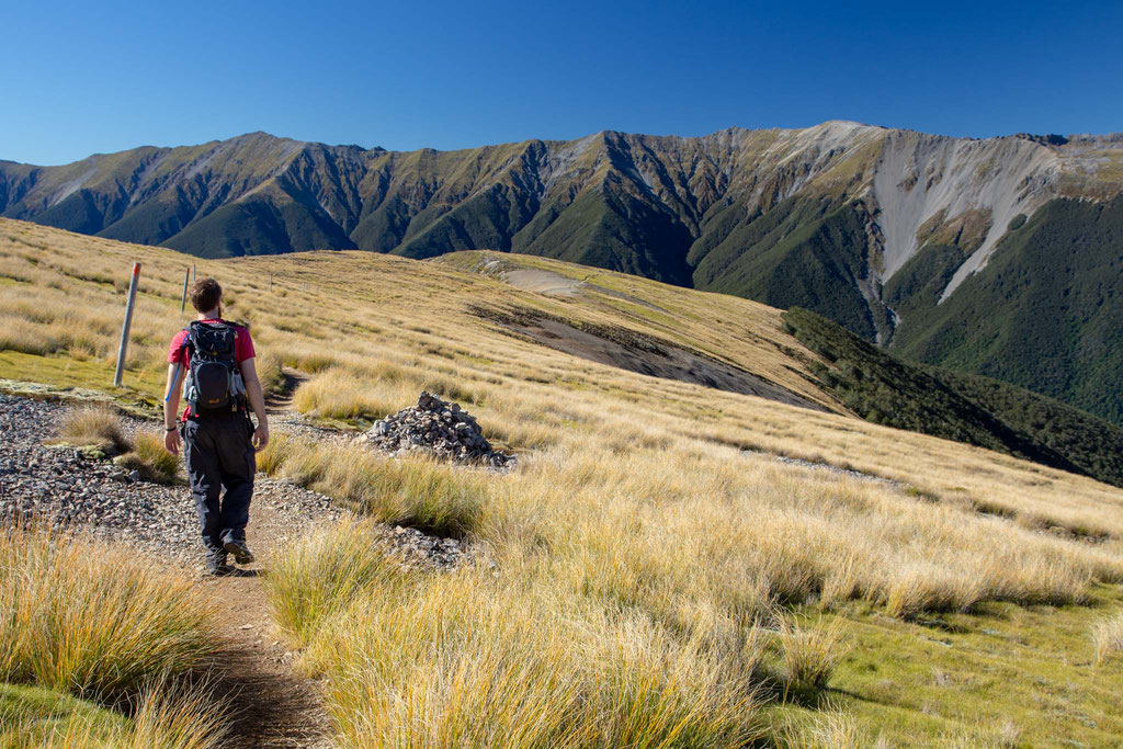 the pathway atop Mount Robert in Nelson Lakes National Park
