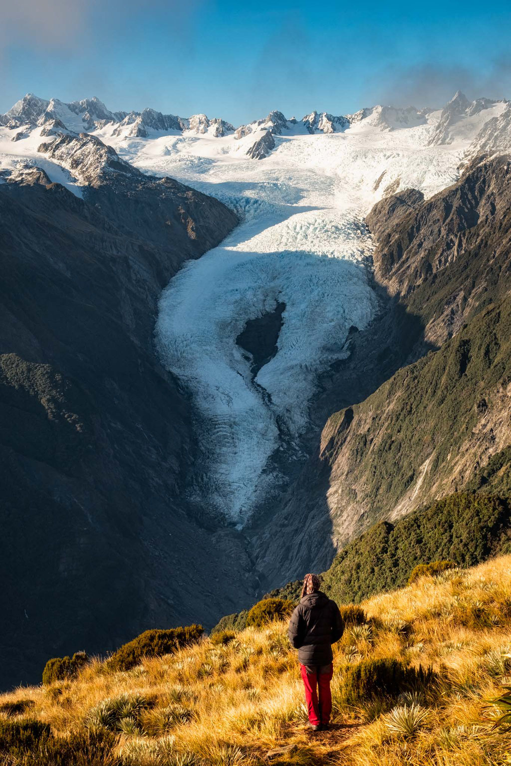 View from the Alex Knob hike over Franz Josef Glacier