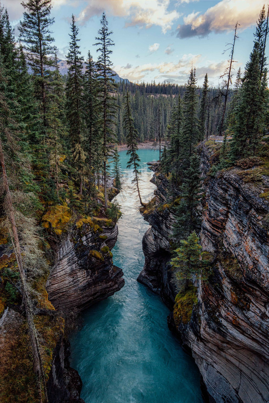 Athabasca Canyon. Two week road trip itinerary around the Canadian Rockies