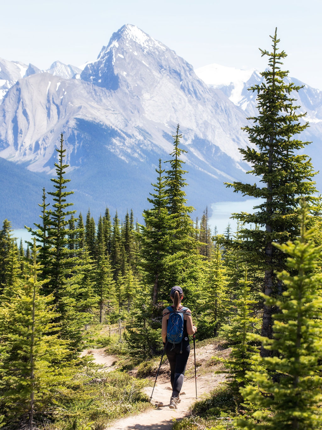 Bald Hills. Best hikes in Jasper NP