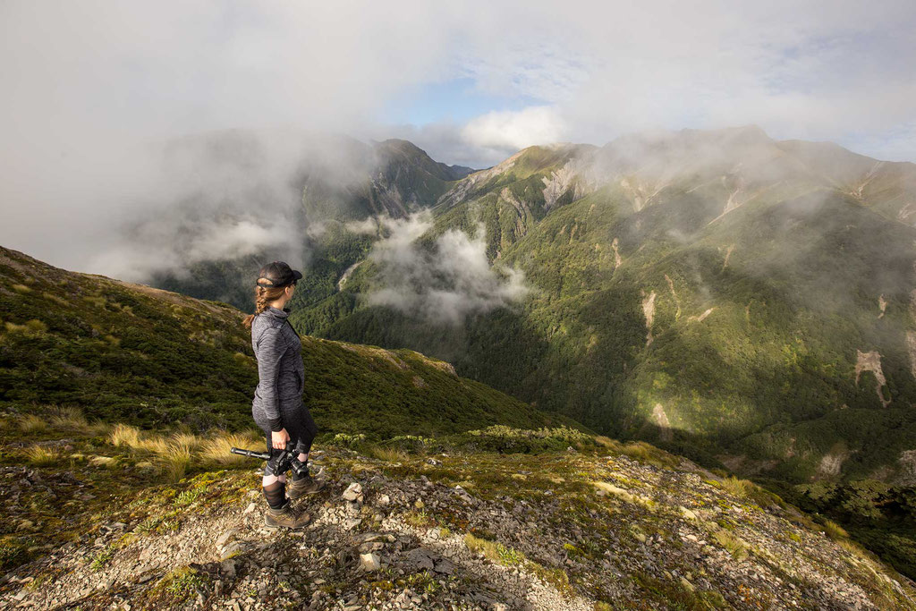 early morning on the sunrise track. Best day hikes on the North Island of New Zealand