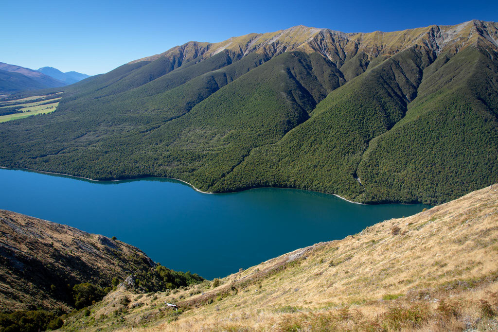 Lake Rotoiti from Mount Robert Hike