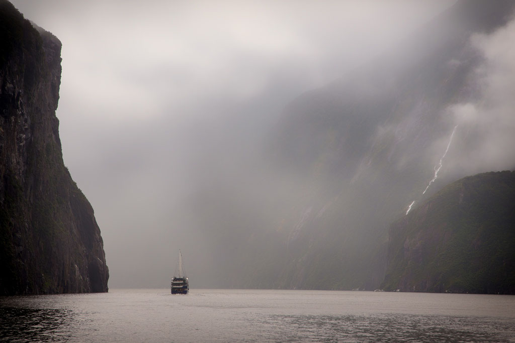 Cruise through Milford Sound