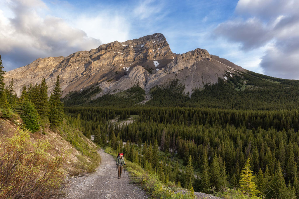 Elbow Sheep Wildland Provincial Park. Best hikes near Canmore and Kananaskis
