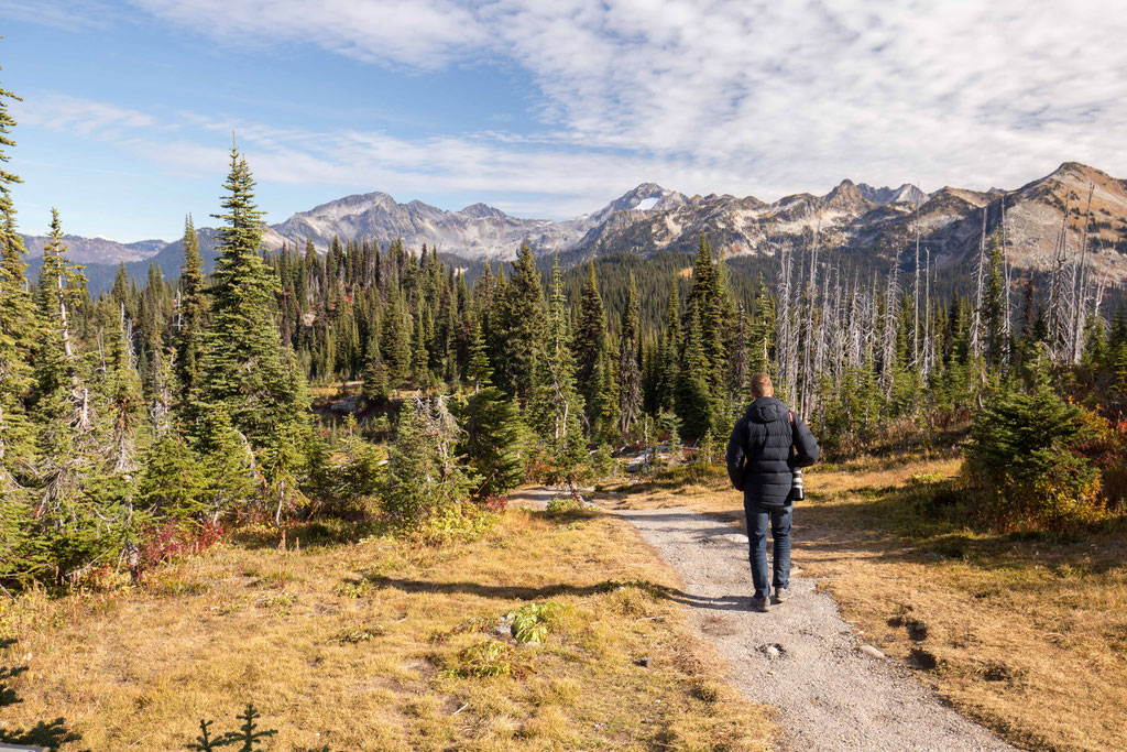 Hiking trails along the Meadows in the sky Parkway near Revelstoke