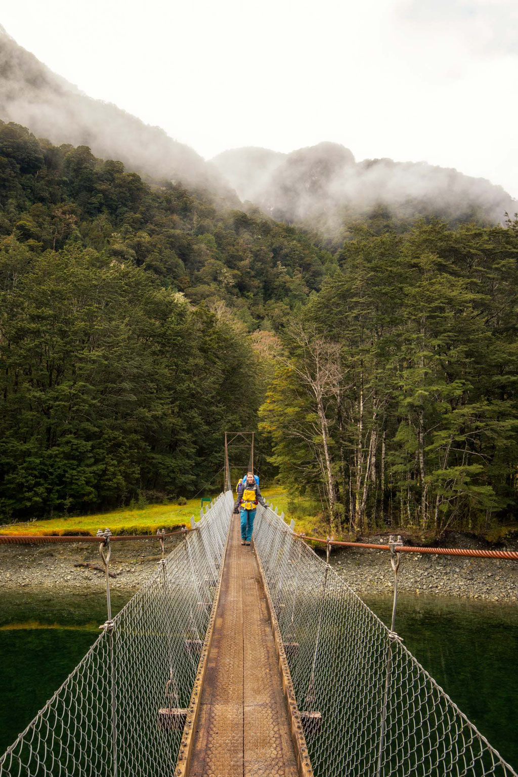 The suspension bridge along the Milford Track