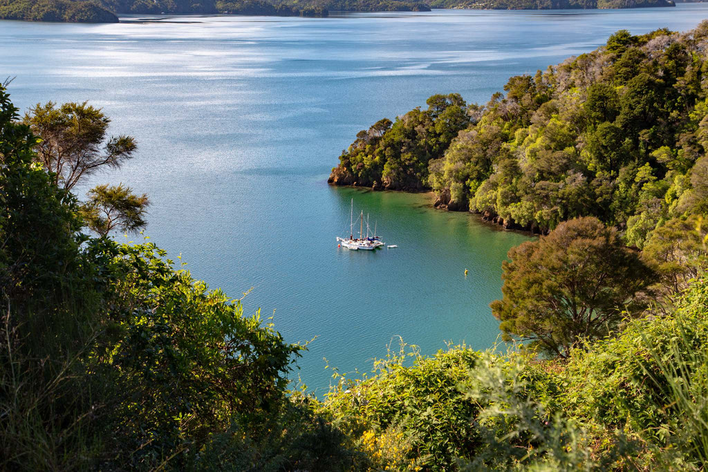 One of the coves in the Marlborough Sounds