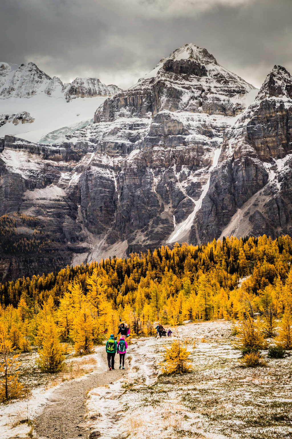 Larch Tree Valley. Two week road trip itinerary around the Canadian Rockies