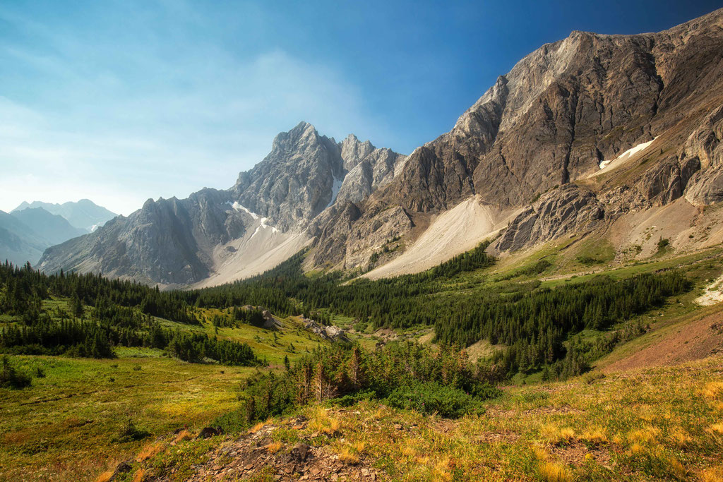 Alpine Meadows enroute to Piper Pass. best hikes in Canmore and Kananaskis