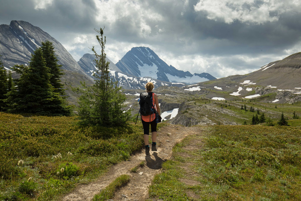 Burstall pass.  Peter Lougheed Provincial park.  Hikes in Kananaskis