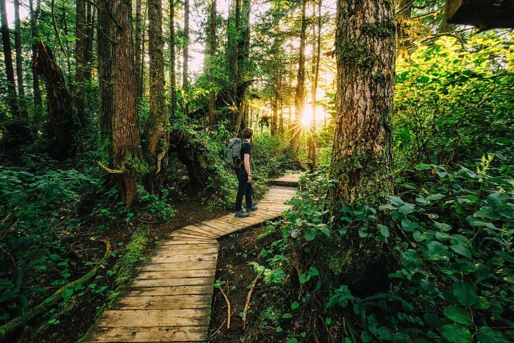 Hiking along one of the trails in the Pacific Rim National Park Reserve on Vancouver Island