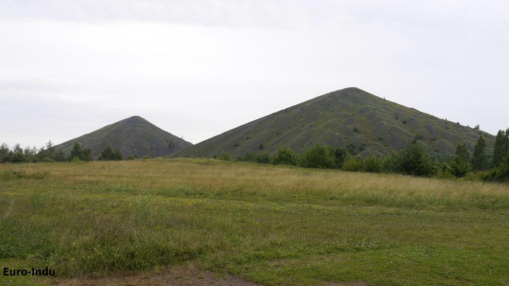 Doppelspitzkegelhalde 74&74a. Die Maximale Höhe beträgt etwa 188m. Damit gehören sie zu den Höchsten Halden Nordfrankreichs