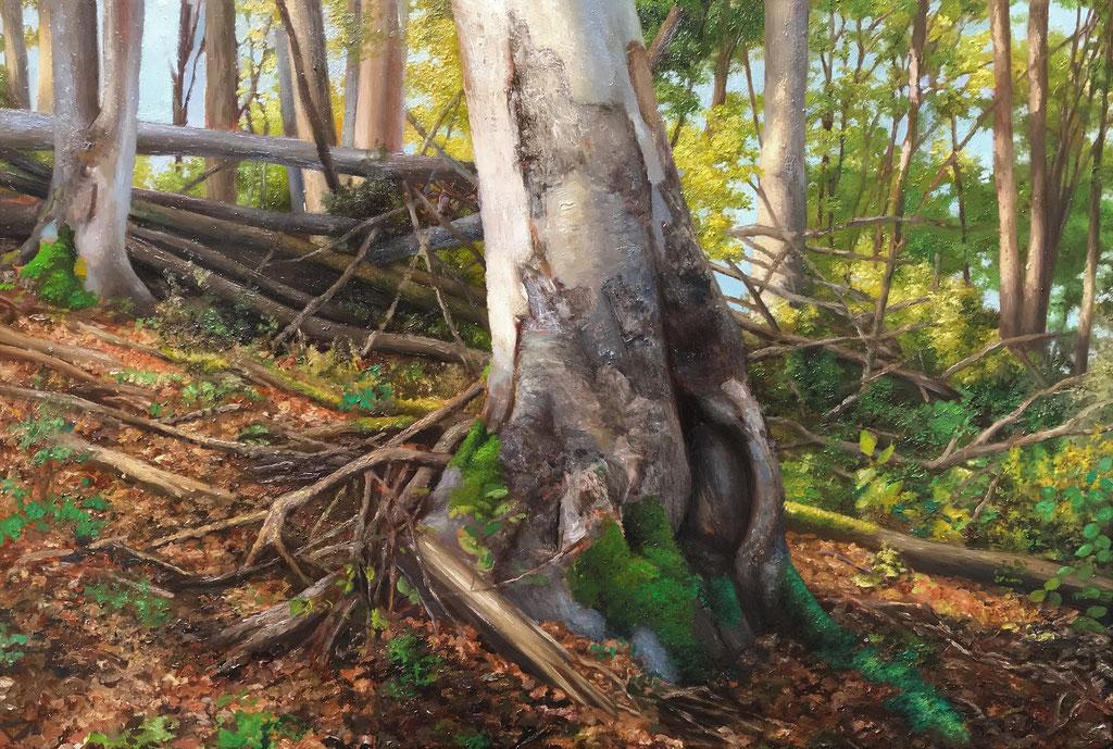 Andreas Leißner: *Wald I*, 2012, Öl/Nessel auf MDF-Platte, 36 x 52,5 cm