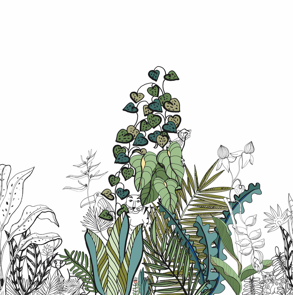 wall paper boarder with jungle illustration