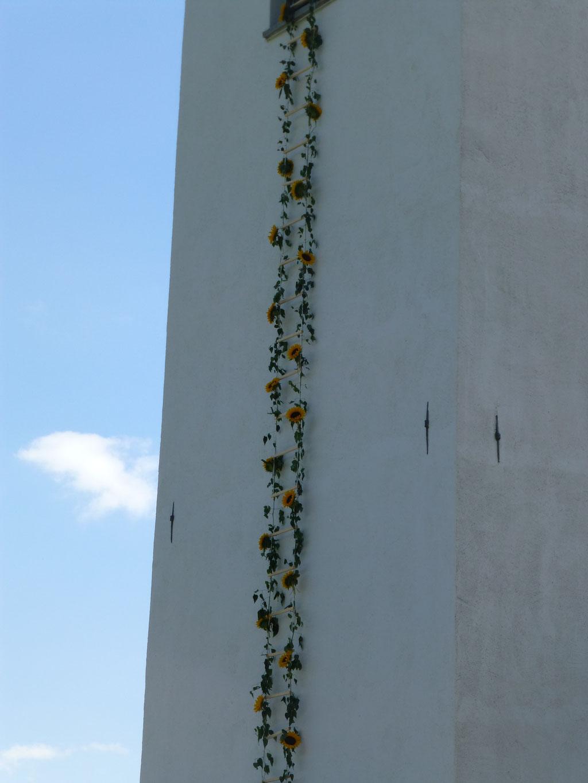 Eine Sonnenblumenleiter führt zum Glockenturmfenster.