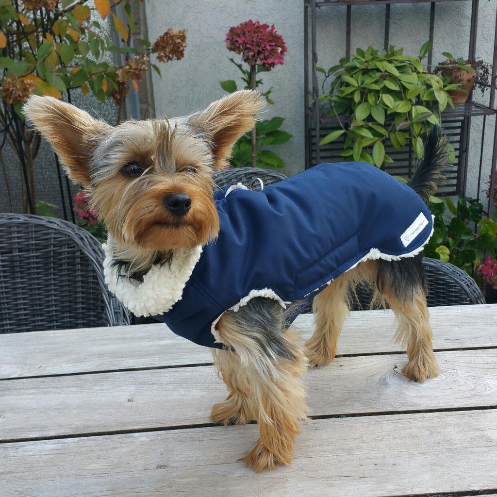 Thermo-Hundemantel, Hundemantel Maßanfertigung Chihuahua, Hundemantel nach Maß Chihuahua