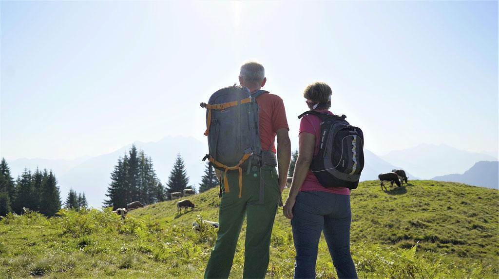 Wandern für Pensionisten; Fit im Alter in Salzburg;