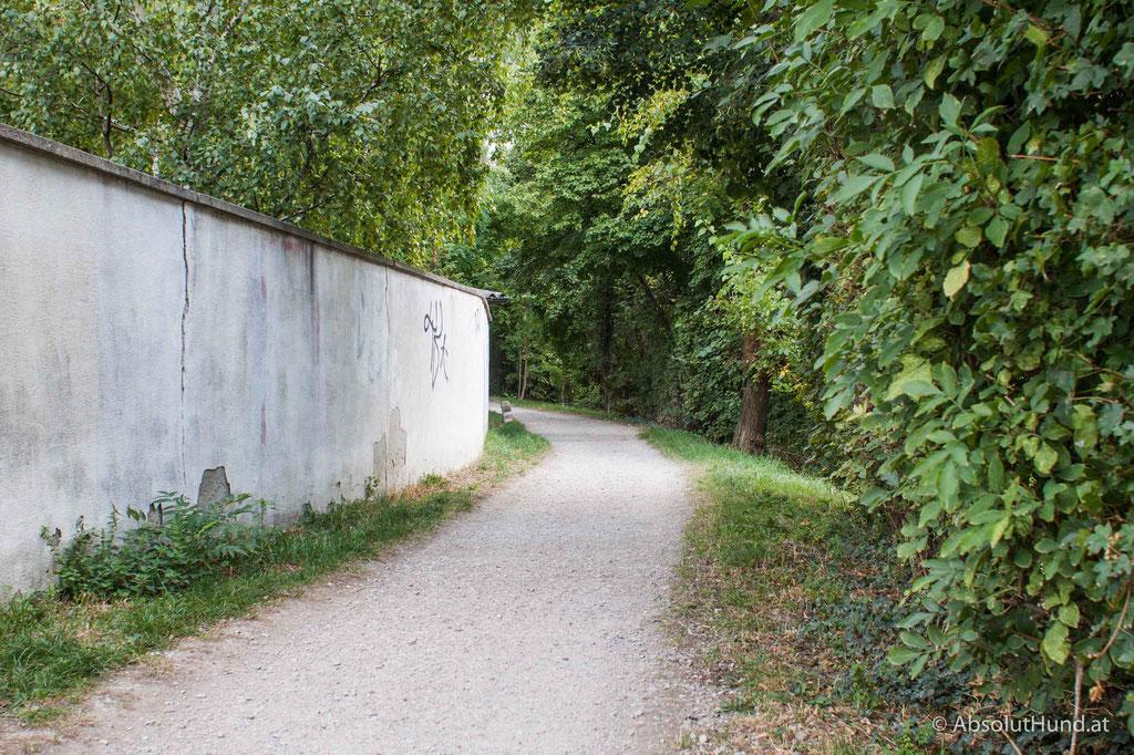 Hundezone Gaulgasse, 1230 Wien
