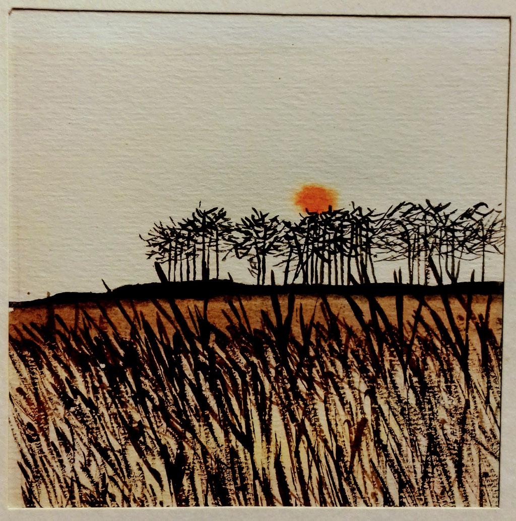 wintery field