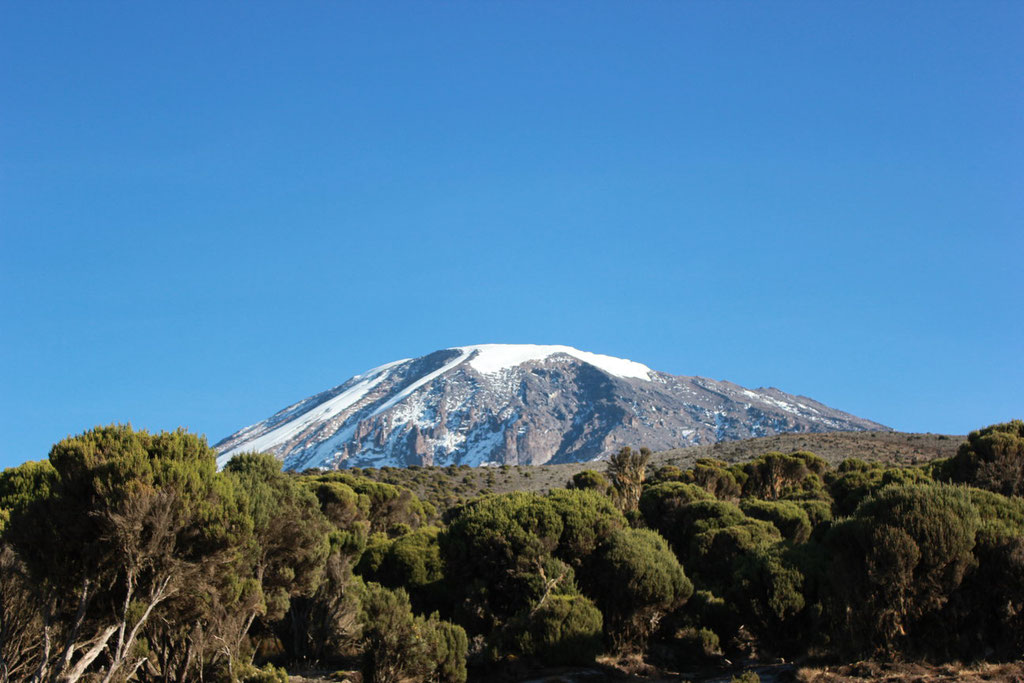 Kili From Mweka Camp - Kilimanjaro Company