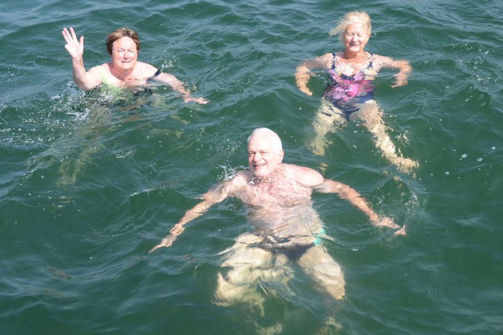 Alssund schwimmen