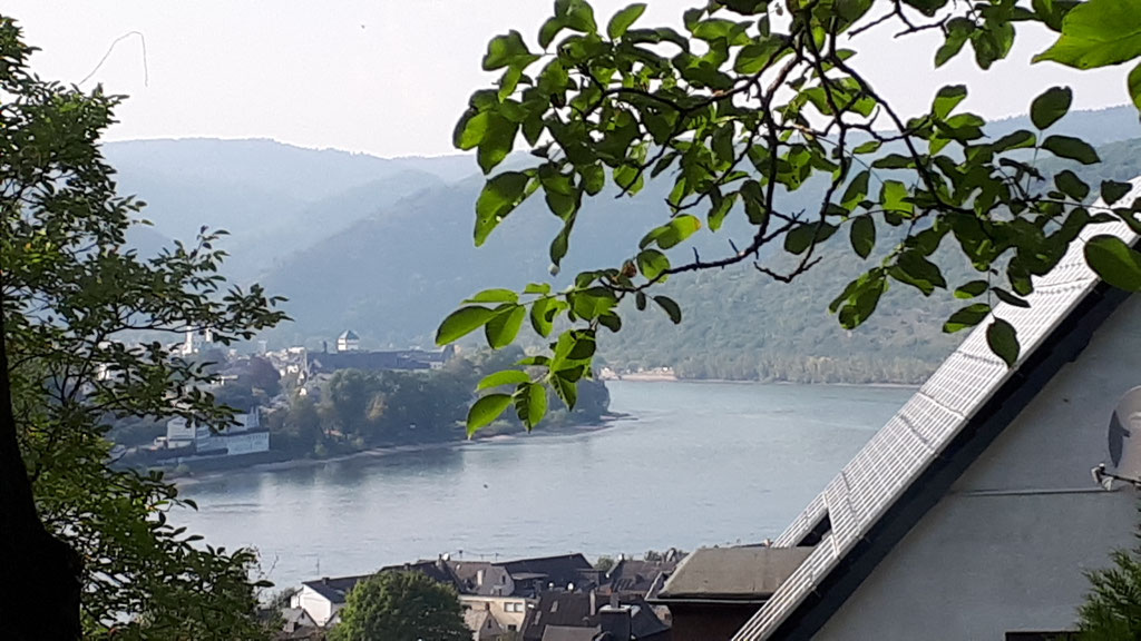 Blick vom Esszimmer auf den Rhein im Sommer