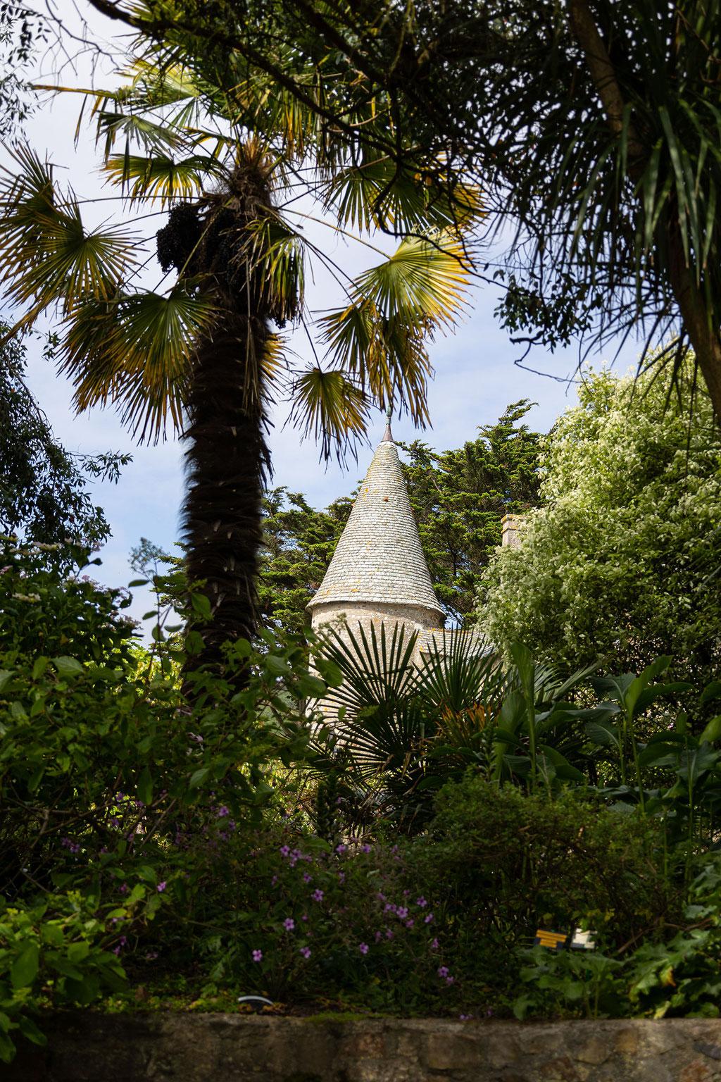 Palmen wachsen überall im Botanischen Garten von Vauville.