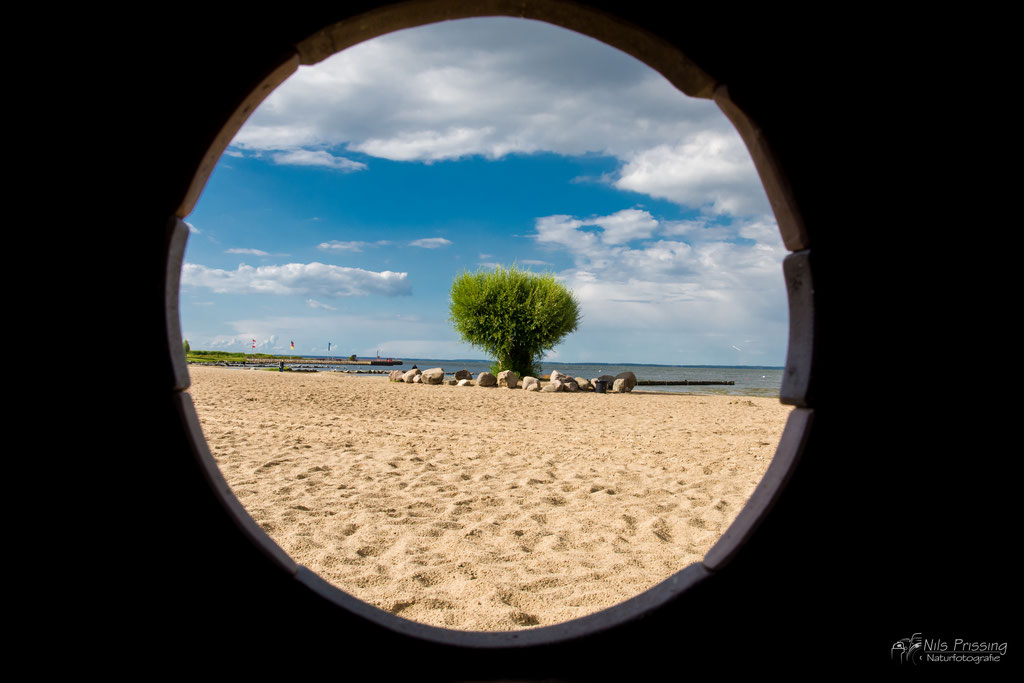 Strand Ueckermünde