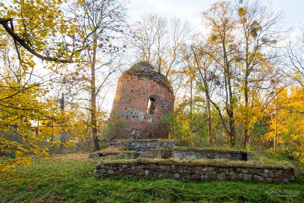 Burgturmruine in Galenbeck