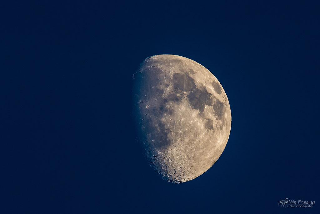 Der Mond aufgenommen mit 500mm
