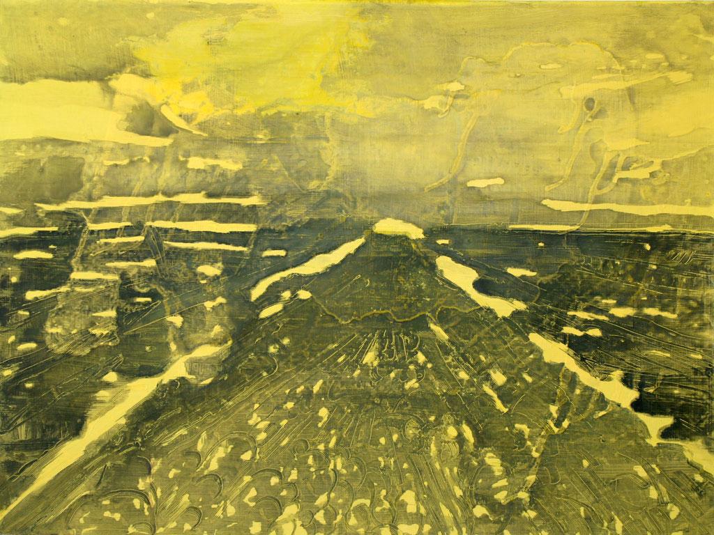 Landschaft gelb I, 2014, Öl auf Leinwand, 60 x 80 cm