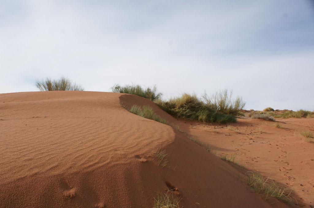 Schöner Sandhaufen zum Spielen