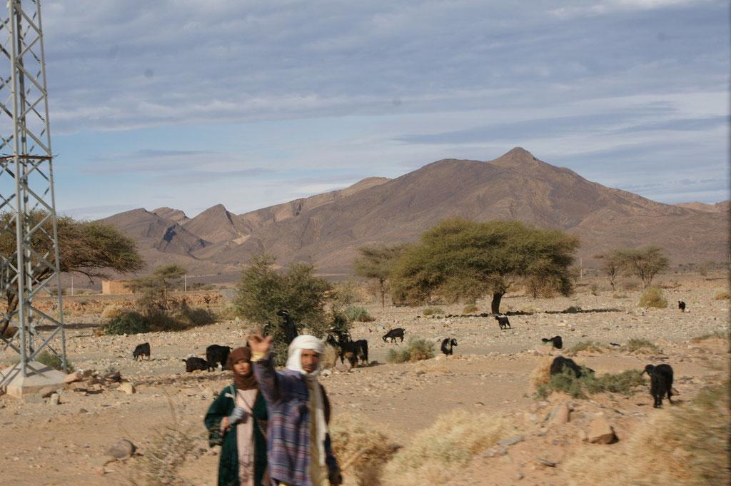 Beschauliche Landschaft mit freundlichen Schafhirten