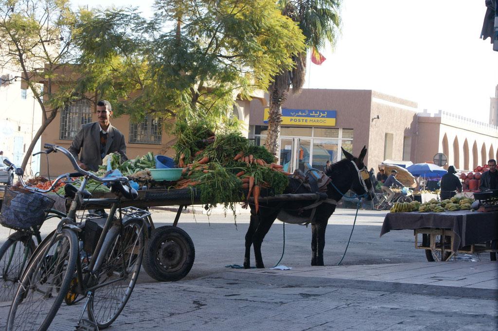 Auch in Tiznit haben sie noch richtige Eselfuhrwerke