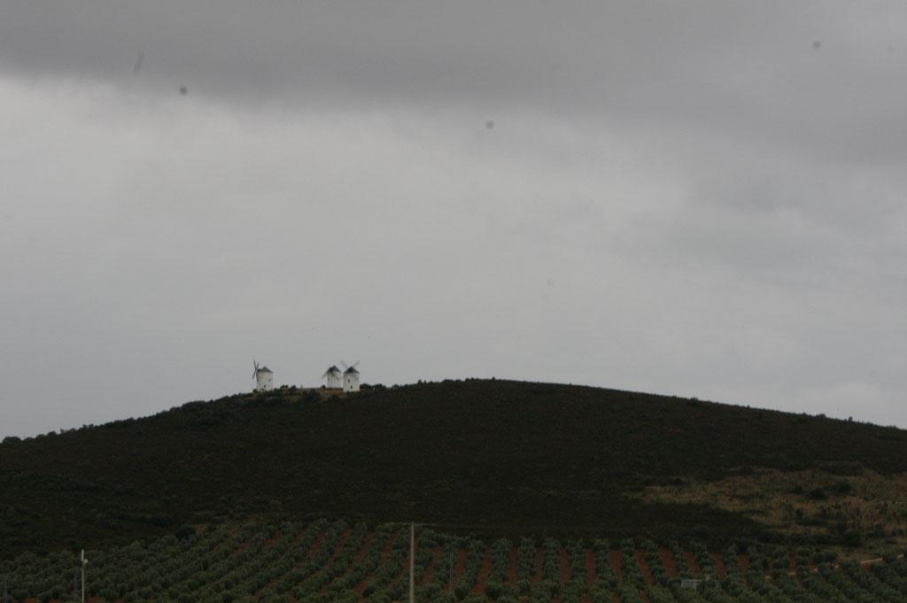 Die Mühlen