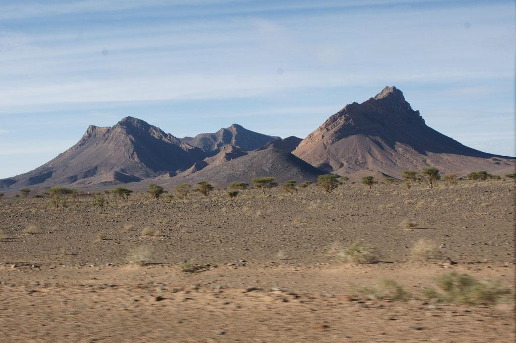 Und sofort hinter der Stadt wieder Wüste und Ruhe