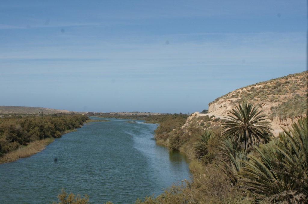 Aber über den Oued gibt es keinen direkten Weg für uns also aussen rum...