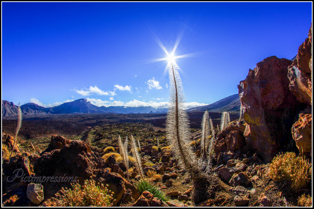 Unreal / Teide National Park / Teneriffa