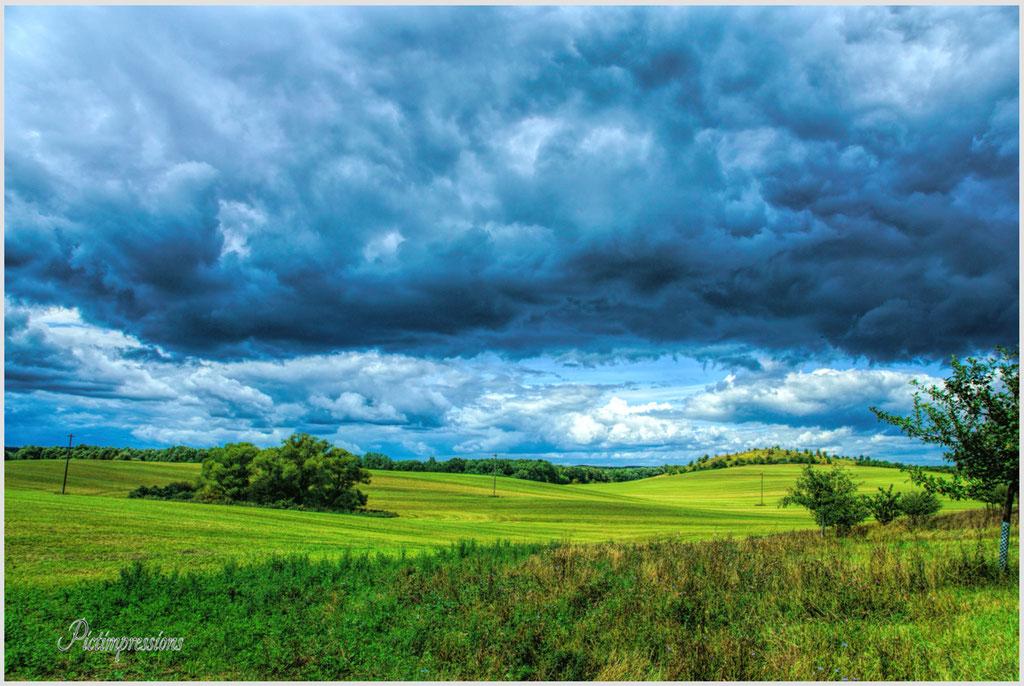Fresh fields / Mecklenburg Vorpommern