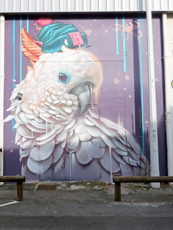 Perroquet au Mur7 de Gerland
