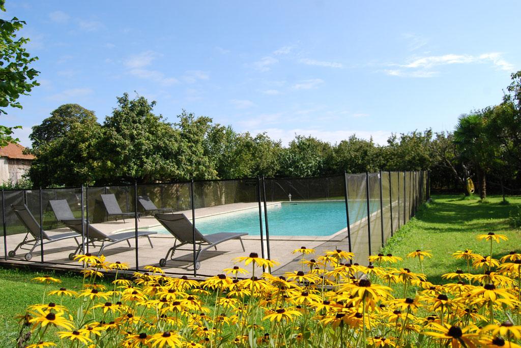 Profitez de la piscine en été