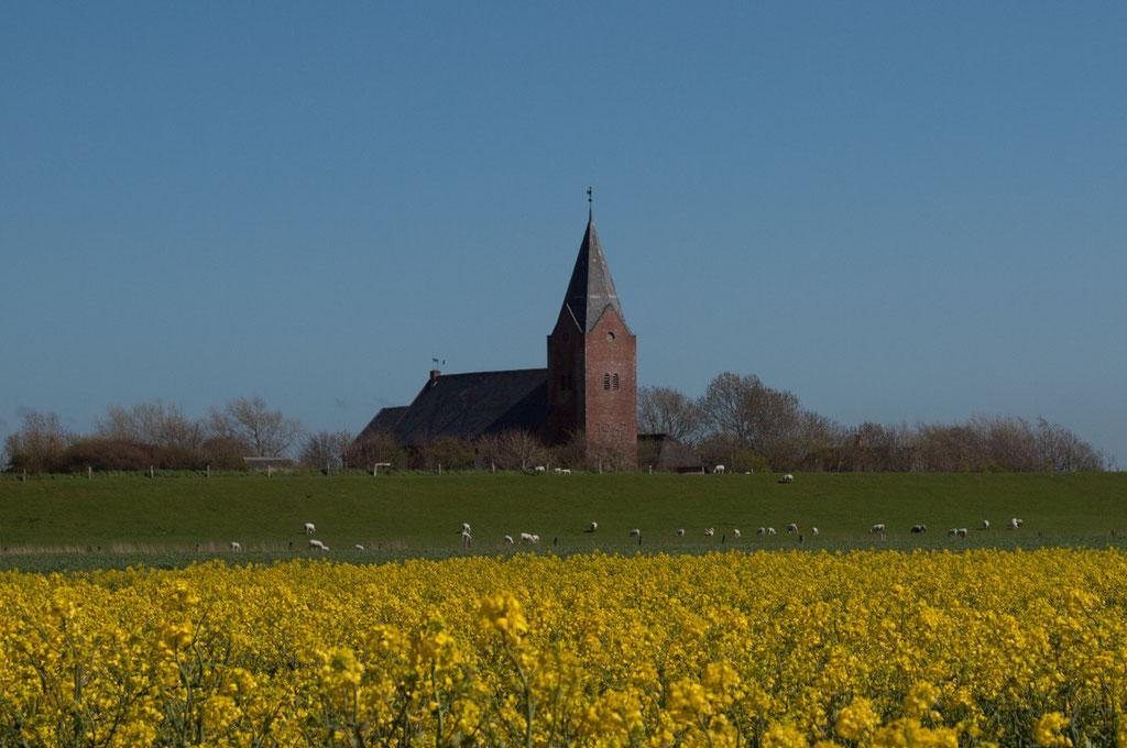 Alt - Horsbüll